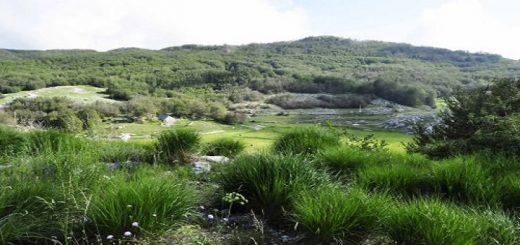 Národný park Lovćen v Čiernej Hore