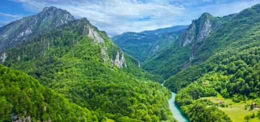 Rieka Tara, Čierna Hora