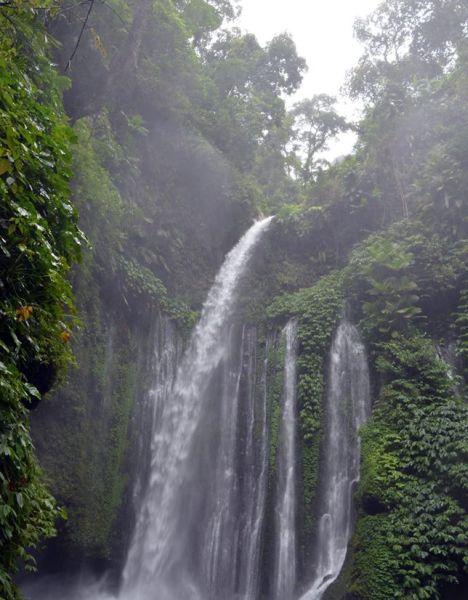 Vodopády v džungli