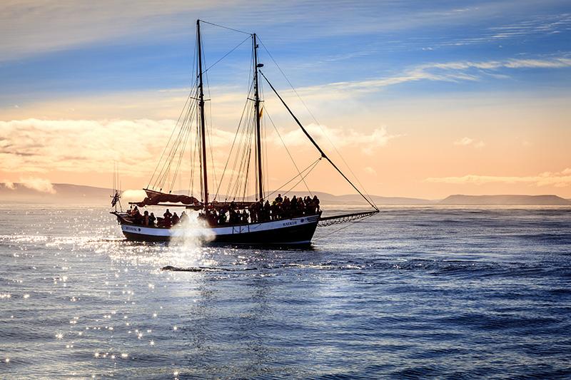 Husavik Island